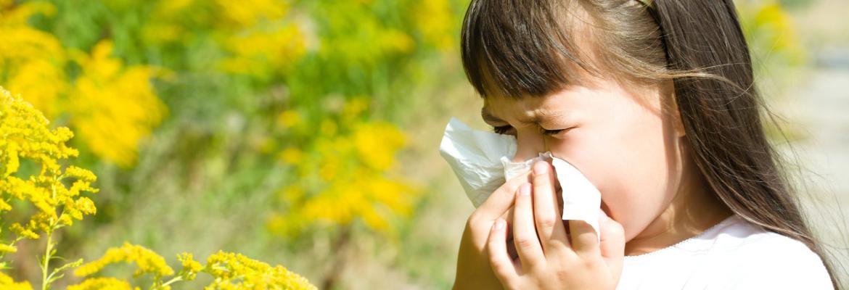 Поллиноз: загадочное аллергическое заболевание