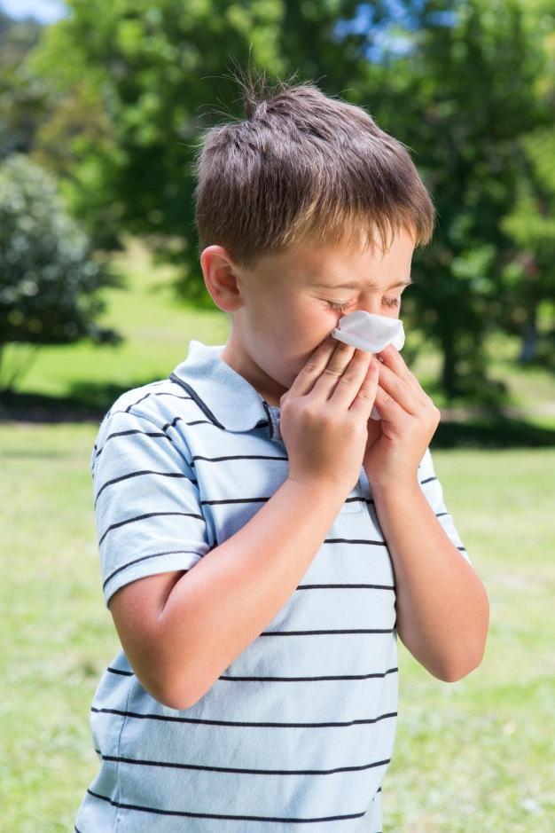 allergy boy - Поллиноз: загадочное аллергическое заболевание